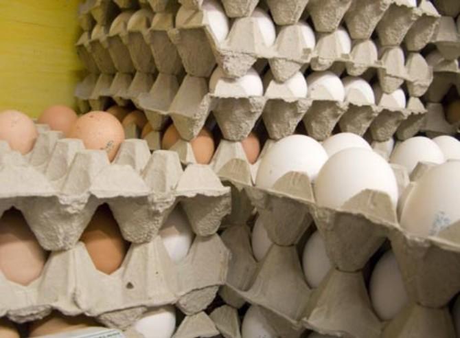 شناسایی کارگاه غیر مجاز بسته بندی تخم مرغ