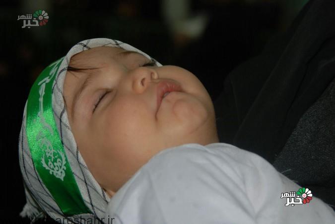 گزارش تصویری از همایش جهانی  شیر خوارگان حسینی درشهرستان ملارد