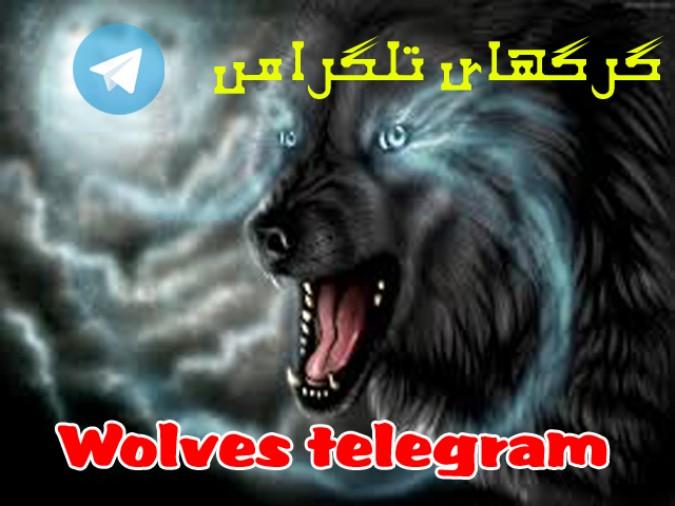 گرگهای تلگرامی  در لباس ژورنالیسم