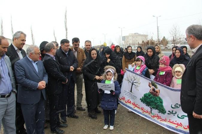 برگزاری جشن درختکاری در شهرستان ملارد