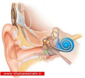 علت زنگ زدن گوش چیست؟