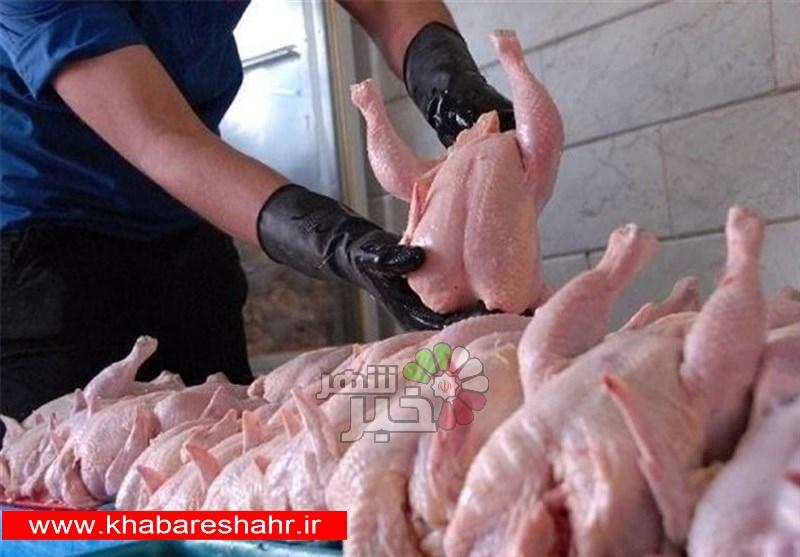 قاچاق مرغ به کشورهای همسایه/ تعادل بازار به هم خورد
