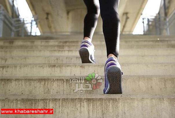 بالا رفتن از پله هیچ آسیبی به عضلات زانو وارد نمیکند