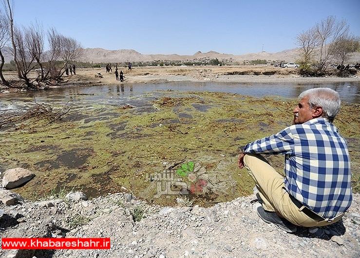 ۶ هزار هکتار از بافت کشاورزی ملارد غیرقابل کشت است
