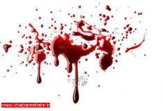 دستگیری قاتل همسرکش در منزل پدرزن
