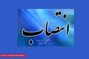 معارفه سرپرست معاونت برنامه ریزی توسعه فرمانداری شهرستان شهریار برگزار شد