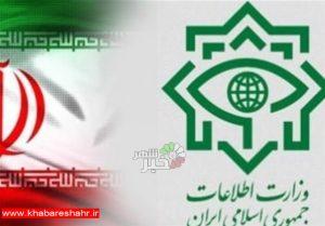 وزارت اطلاعات: ۲۵ نفر از عوامل اخلال در نظام ارزی دستگیر شدند