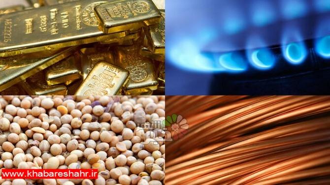 احتمال گرانی قیمت کالاهای مهم در سال آینده