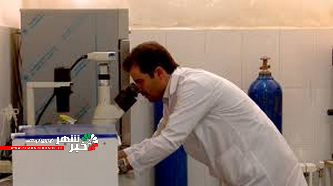 تولید داروی گیاهی ضدسرطان در تبریز