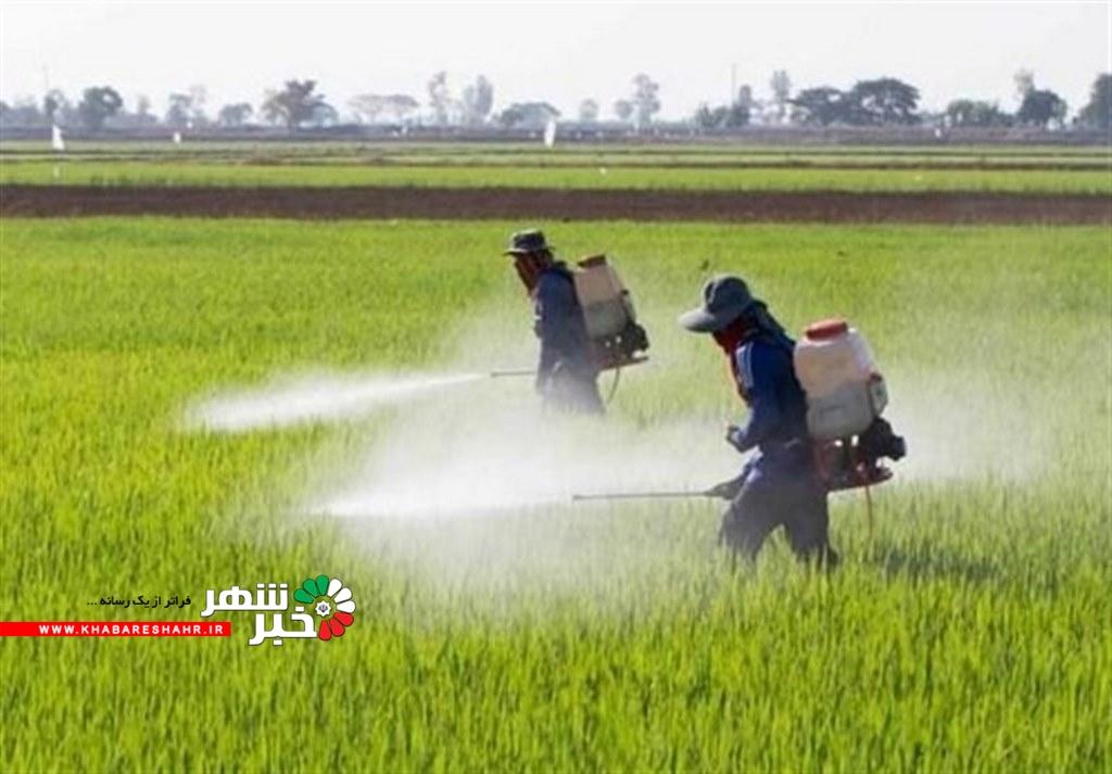 پیشنهاد استفاده از تجهیرات سمپاشی کشاورزی برای مقابله با کرونا