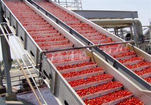 استان تهران رتبه اول صنایع تبدیلی کشاورزی را در کشور دارد